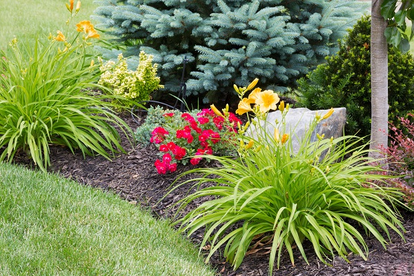 landscaping in Delaware